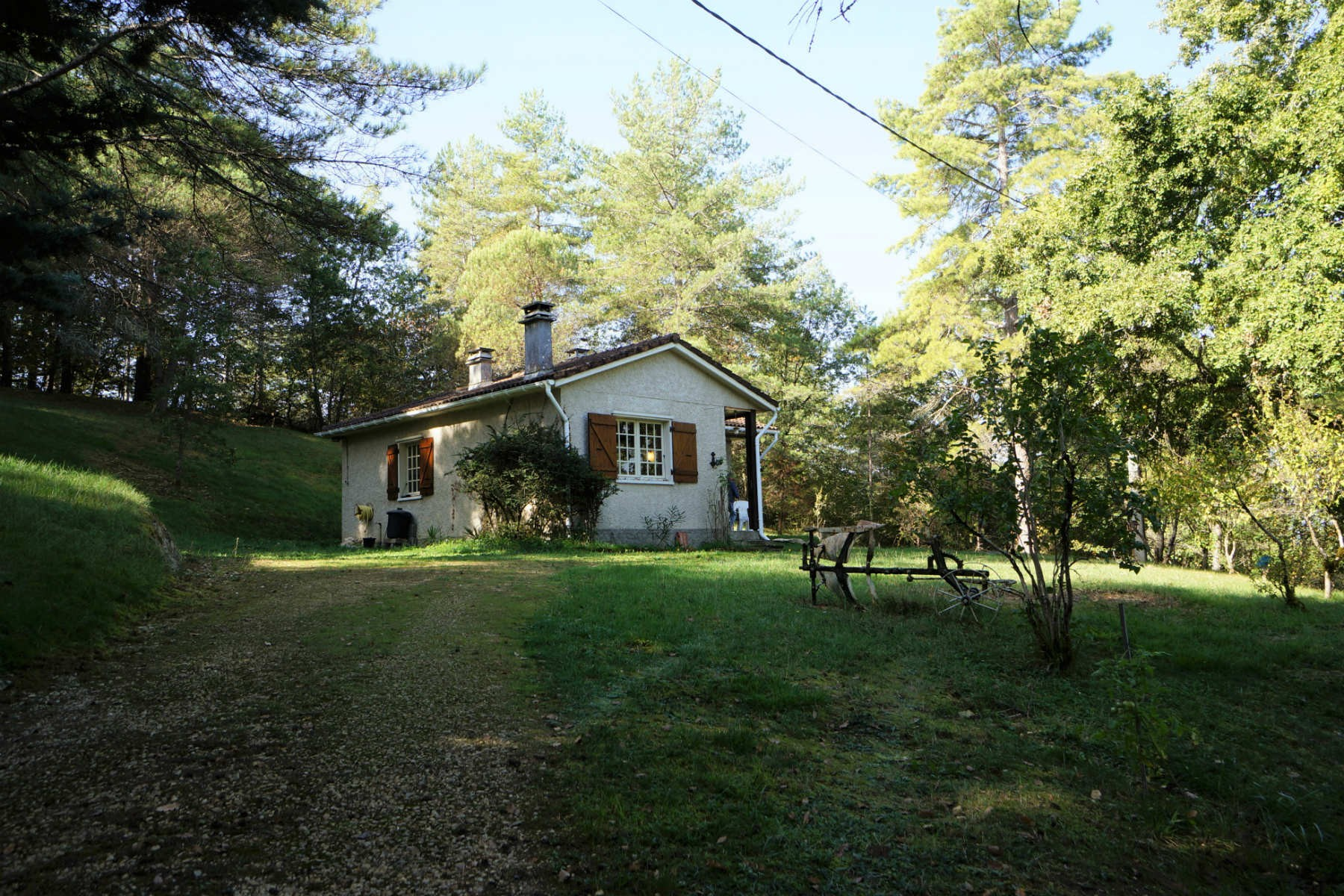 Country Cottage with 1 Hectare of Land