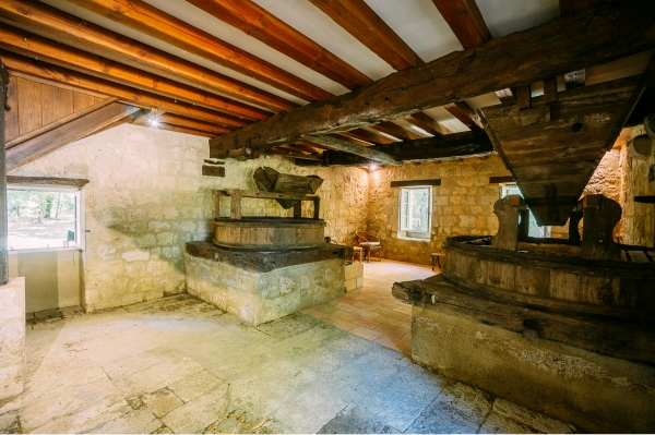 Old Renovated Water Mill With Guest House And Pool